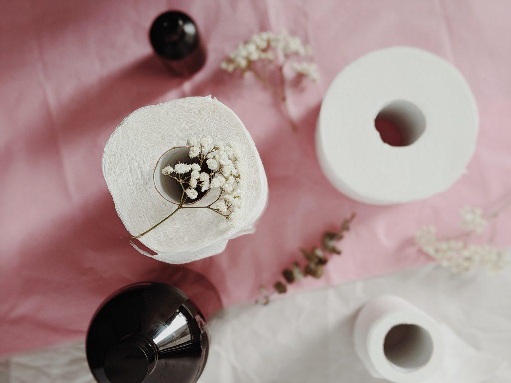 toilet paper artistically arranged